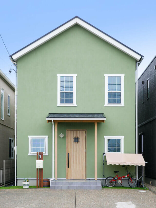 #88 pistachio color house