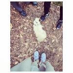 ネコとお散歩