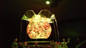 アートアクアリウム展・名古屋